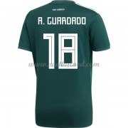 Voetbalshirts Mexico WK 2018 Andres Guardado 18 Thuisshirt..