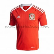 Voetbaltenue Wales Nationale Elftal 2016 Thuisshirt..