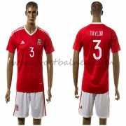 Voetbaltenue Wales Nationale Elftal 2016 Taylor 3 Thuisshirt..