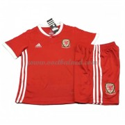 Voetbaltenue Kind Wales 2018 Thuisshirt..