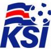 IJsland WK shirt